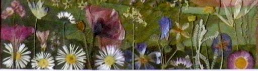 florecillas.jpg