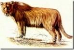 Leão da caverna