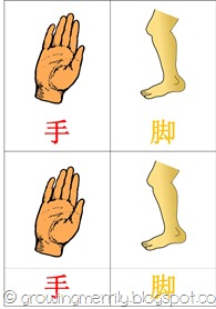 My Body 3 part cards - Chinese