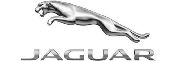 logos jaguar 2012
