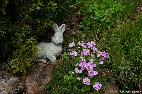 Late Easter 2014_293