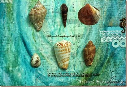 sea shell mm canvas4