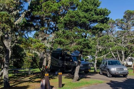 Bullards Beach SP Campground site 55