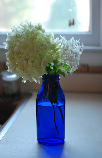 glass, pillow, hydrangeas 028