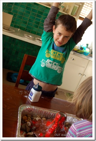 Homemade Volcano ~ Our Aussie Homeschool