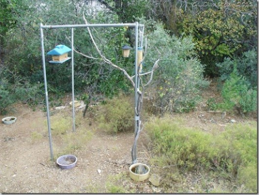 02 Bird feeders Yarnell AZ (1024x768)