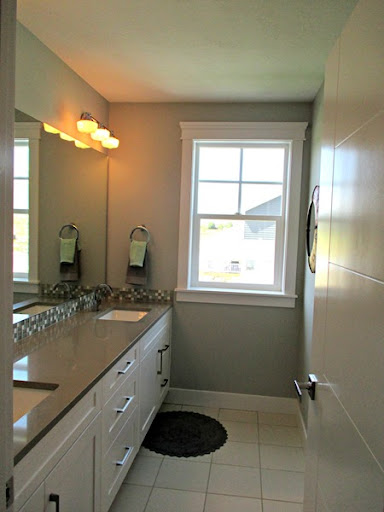 Amazing Misty by Sherwin Williams bathroom paint color