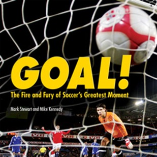 Goal cover