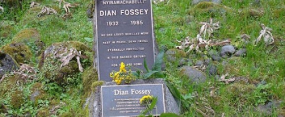Trek to Dian Fossey Tomb (Grave) Hike