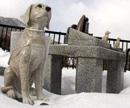 Cemitério para cães e gatos