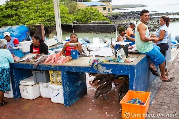 viajar-islas-galapagos-actividades-gratuitas-gratis-baratas-santa-cruz-unaideaunviaje-7.jpg