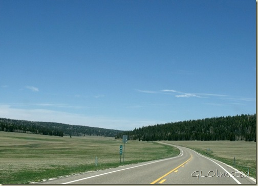 Meadows along SR67 N Kaibab National Forest Arizona