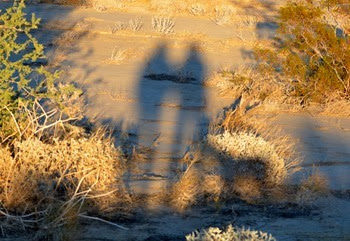 Mo, Sue, and Abby on our evening walk in the desert