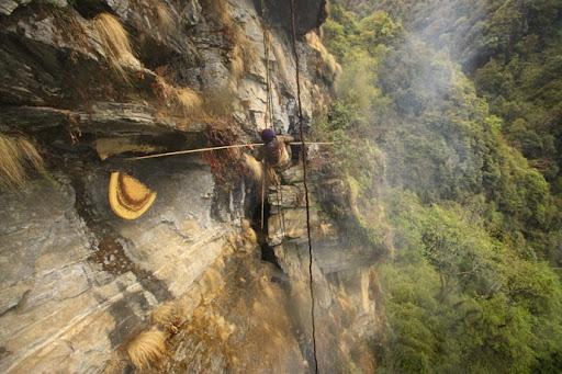 honey-cacciatori-nepal-34