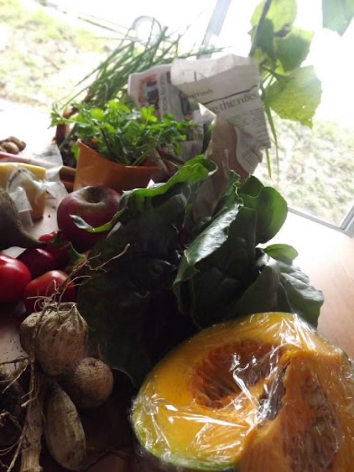 food swap june 2013 (15)