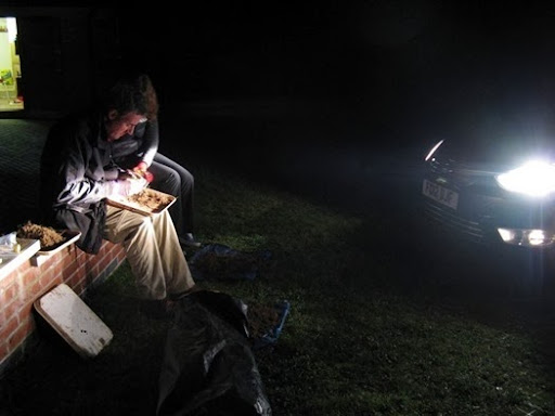Dr David Jones and Jo sorting soil in car headlights in Loddington, Leicestershire