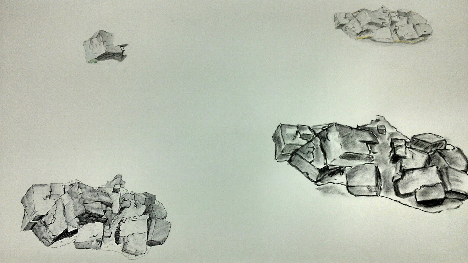 Harpo Draws Natural Forms Project Crit