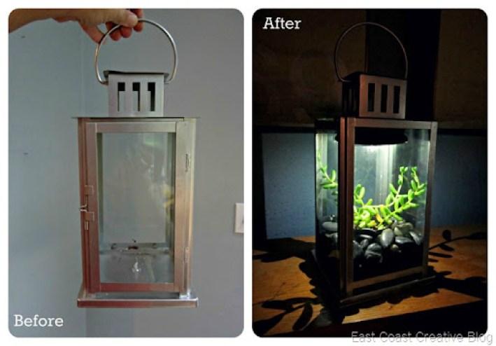Lantern Transformation