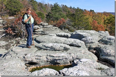 A perspective of size, top of Almos Knob in Leatherwood Wilderness, Ozark National Forest