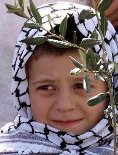 """""""فلسطين لم أعرف أرضا أجمل من أرضك"""" 1"""