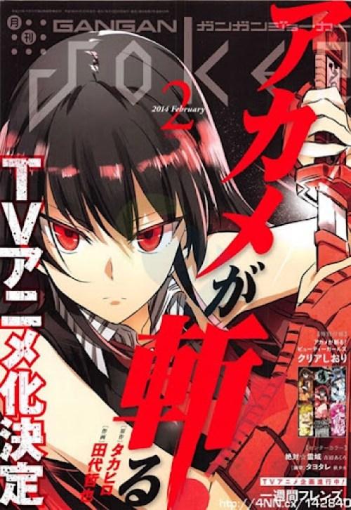 Akame ga KILL_anime