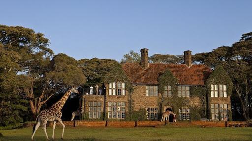 giraffa-manor-5