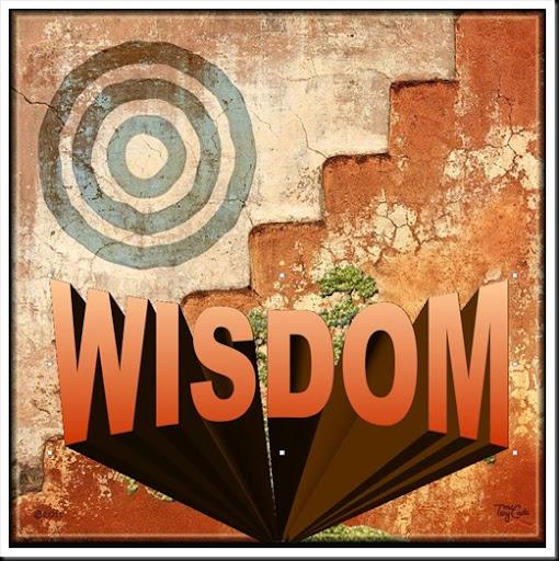 Wisdom 8