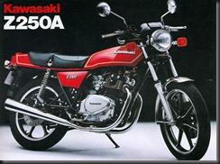 Kawasaki Z 250F