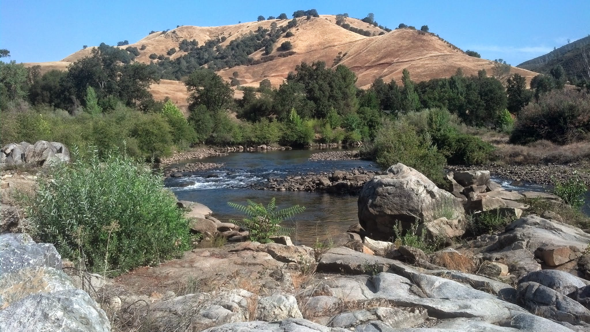 Campground review ponderosa thousand trails lotus ca for Ponderosa cabins california