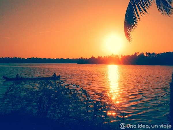 Kerala-backwaters-Kollam-9.jpg