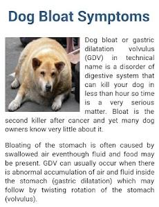 Dog Symptoms Cure screenshot 13