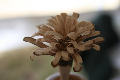 Hobo Flowers (4/5)