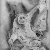 Monkey Drawing