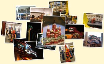 View Florida Trip 2010