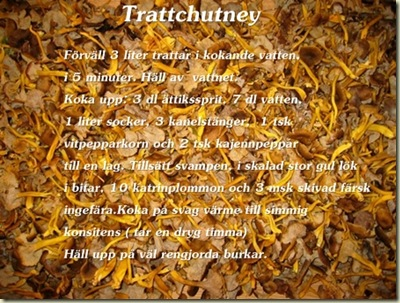 trattchutney