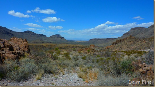 Big Bend Ranch State park_043