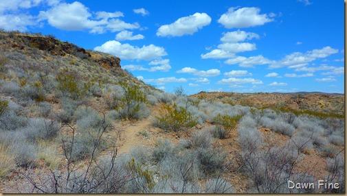 Big Bend Ranch State park_047