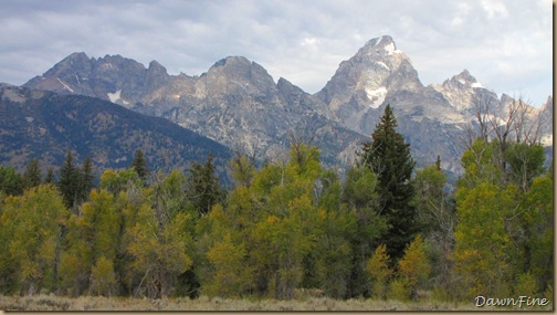 Drive in tetons_20090913_074