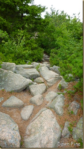 Gorham mt hike_059