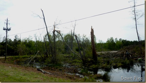 Tornado Damage Sanford NC_030