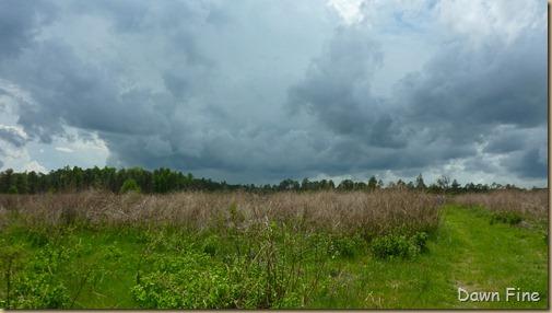 Clouds near Cassins Sp_010