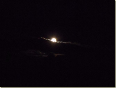 Full moon behind partial cloud from Marble View Forest Road219 Kaibab National Forest Arizona