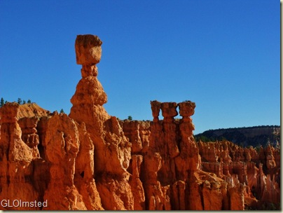 Thors Hammer & hoodoos along Navajo Loop trail Bryce Canyon National Park Utah