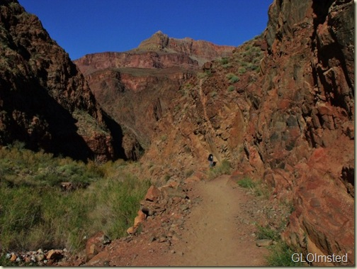 Mike on Bright Angel trail Grand Canyon National Park Arizona