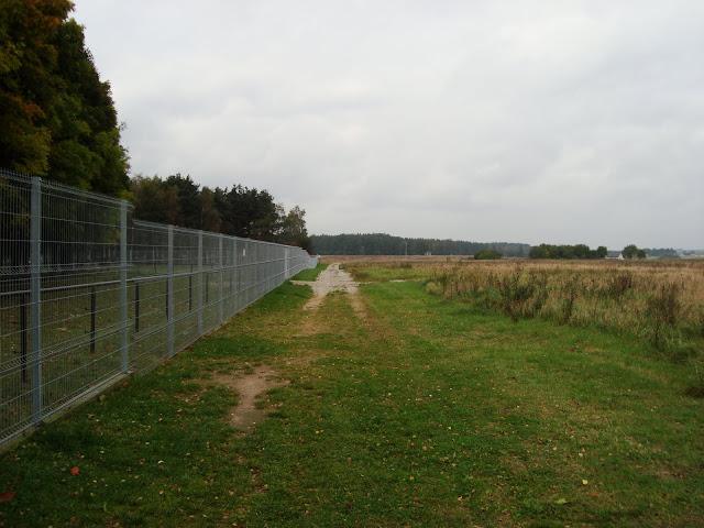 Z lewej żubry, z prawej pola...
