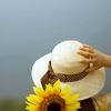 sunflower5rv_edited-1