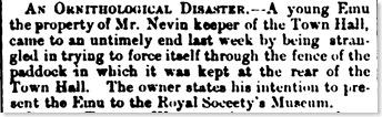 An Ornithological Disaster: Thomas Nevin'semu1878 (2/6)