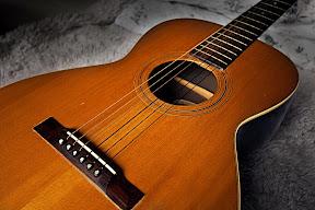 Vega Guitar