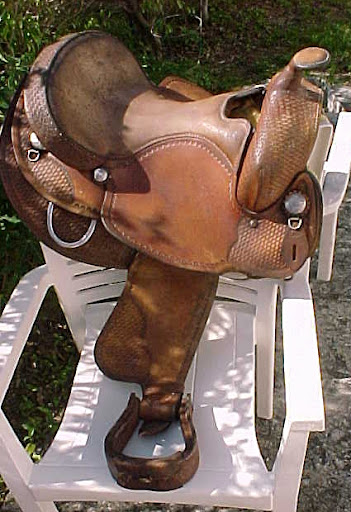 My New Saddle