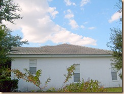 Tampa Non Pressure Roof Cleaning 025